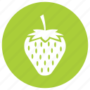 food, fresh, fruit, meal, strawberry, sweet icon