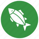 fish, food, healthy, meal, tuna icon