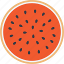 cantaloupe, food, fruit, tropical fruit, watermelon icon