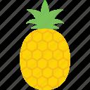 ananas, ananas comosus, organic, pineapple, tropicall icon