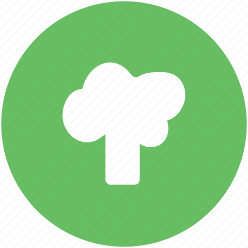 broccoli, cabbage, chard, food, vegetable, vegetarian food icon