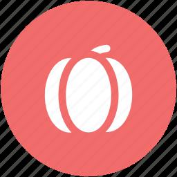 cucurbita maxima, cucurbita pepo, food, jicama, pumpkin, vegetable icon