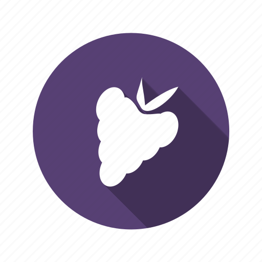 food, fruit, grapes, vine icon