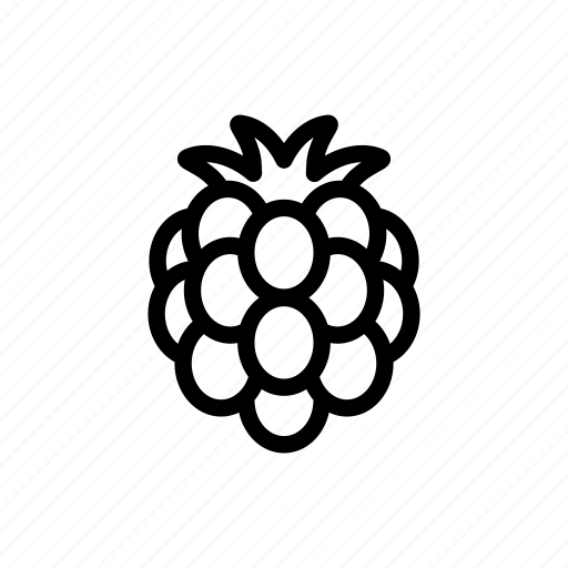 berry, blackberry, eat, food, fruit, gastronomy, rasberry icon