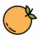 citrus, eat, food, fruit, orange icon