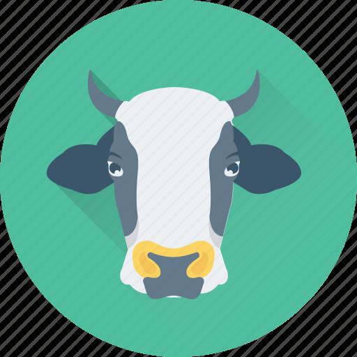 animal, buffalo, cow, dairy, milk icon