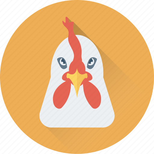 animal, chicken, eggs, hen, rooster icon