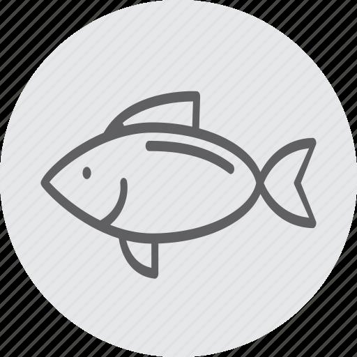 animal, diet, fish, healthy, organic, sea icon