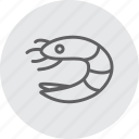 animal, food, sea, seafood, shellfish, shrimp icon