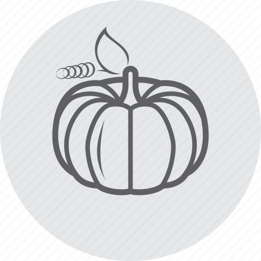 autumn, fall, food, healthy, pumpkin, vegetarian icon
