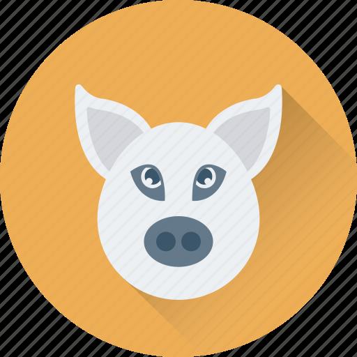 animal, ham, meat, pig, pork icon