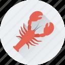 food, lobster, seafood, nephropidae, diet