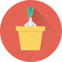 allium sativum, food, garlic, spice, vegetable icon