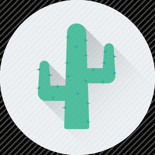 cacti, cactus, desert, nature, plant, thrones icon