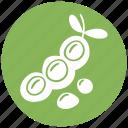 vegetable, legume, allergen, soya, food icon