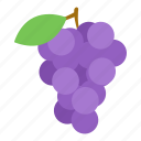 berry, fruit, grape icon