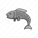 fish, food, salmon, seafood icon icon