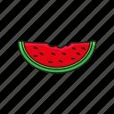food, organic, vegetable, watermelon icon icon