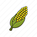 corn, farm, food, organic icon icon