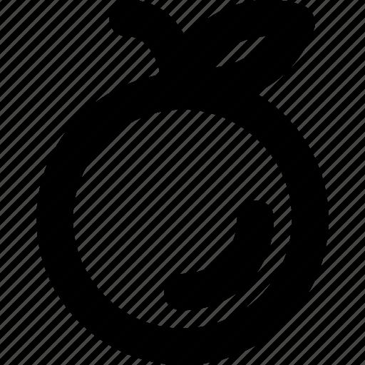 Diet, food, fruit, healthy, orange icon - Download on Iconfinder