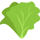 food, green, leaves, lettuce, taste, tasty, vegitables icon