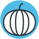 food, nutrition, pumpkin, squash plant, vegetable icon