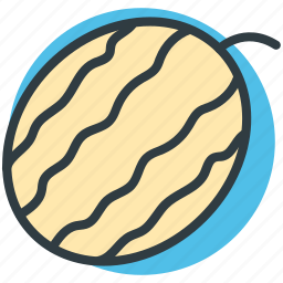 cantaloupe, food, fruit, healthy food, watermelon icon