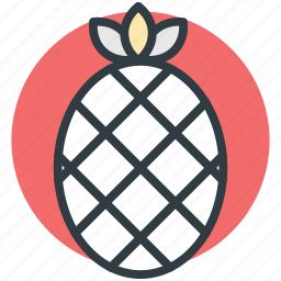 ananas, ananas comosus, organic, pineapple, tropical fruit icon
