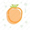 diet, fruit, healthy, iodine, persimmon icon