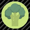 broccoli, food, healthy, vegetable, vegetarian