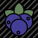 blueberries, blueberry