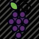 bunch, fruit, grape, grapes