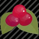 cherry, cocktail, delicious, food, fruit, milkshake, sweet