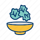 food, healthy, salad icon