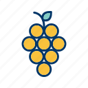 fruit, grapes, healthy icon