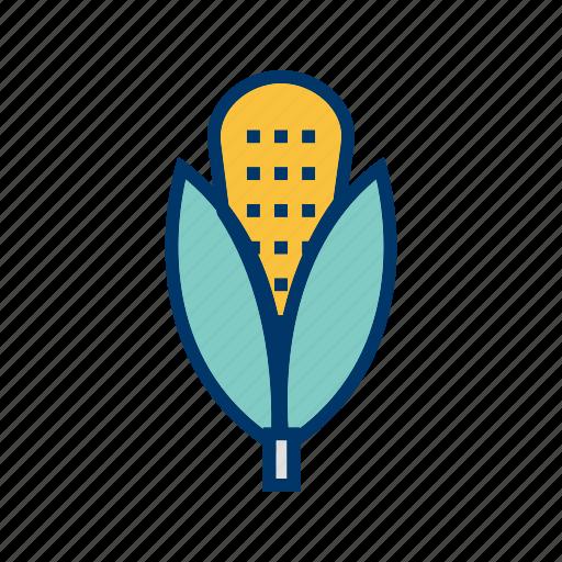 corn, maize, plant icon