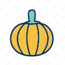healthy, pumpkin, vegetable icon