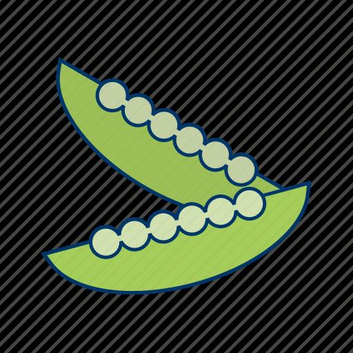 cucumber, diet, healthy, lettuce, salad, vegetables icon
