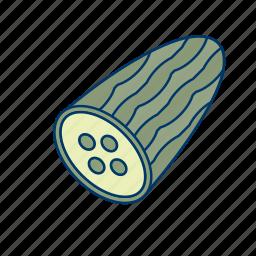 cucumber, diet, food, healthy, plant, salad, vegetables icon