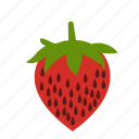 food, fruit, health, healthy, strawberries, strawberry, sweet icon