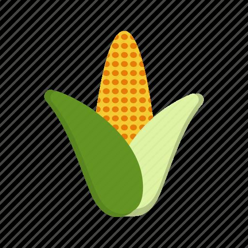 food, maize, plant icon
