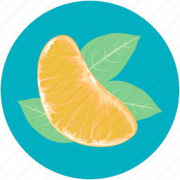 food, fruit, healthy diet, orange, orange slice icon