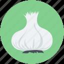allium sativum, diet, food, garlic, spice