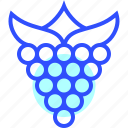 beverage, drink, eatery, food, meal, raspberry icon