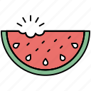 watermelon, cantaloupe, juicy, organic icon