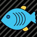 fish, health, healthy, marine