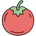 cooking, food, healthy, tomato, vegetables icon