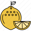 citrus, cocktail, drink, juice, lemon icon