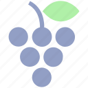 berries, flavor, food, fruit, fruits, grape, grapes icon