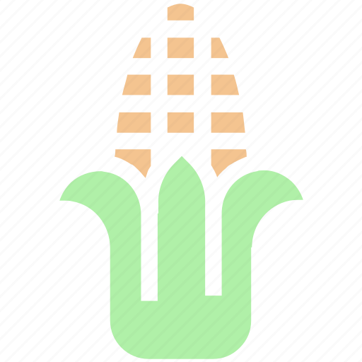 agriculture, corn, maize, starch, sweet corn, syrup, vegetables icon